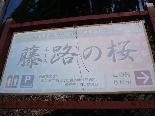 P4240032