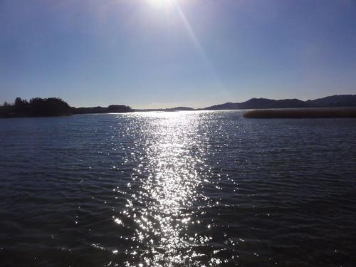 猪鼻湖一周(麻山事件): 峰の松...